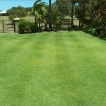 Dans Lawns Dunsborough